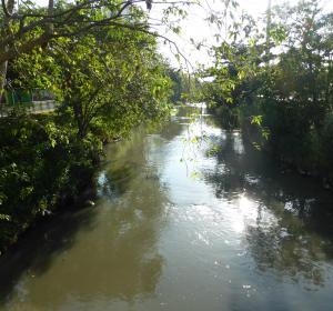 Passei do Mindu da Cidade Manaus